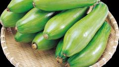 Как приготовить оладьи из кабачков