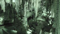 Каков возраст наскальных рисунков в испанских пещерах