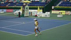 Летние олимпийские виды спорта: теннис