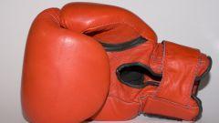 Летние олимпийские виды спорта: бокс