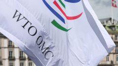 Кто против вступления России в ВТО