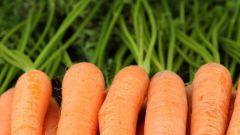 Как приготовить морковный сок