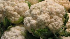Как приготовить запеканку из цветной капусты