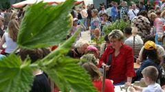 Как попасть на Международный фестиваль Крапивы