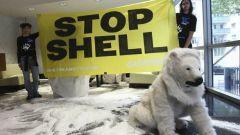 Где активисты Greenpeace установили капусулу со снегом