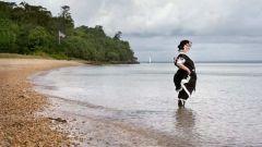 Как попасть на частный пляж королевы Виктории