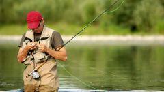 Как выбрать рыбацкое снаряжение