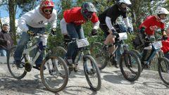Летние олимпийские виды спорта: горный велосипед