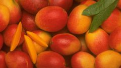 Кто придумал Фестиваль манго в Индии