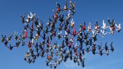 Кто придумал Всемирный фестиваль свободного падения в США
