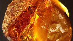 Как ловят янтарь в Калининграде