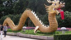 Почему в Китае из отеля выселили якутских туристов