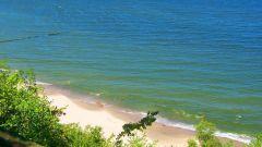 Почему цветет Балтийское море