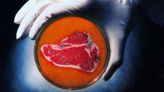 Что такое мясо из пробирки