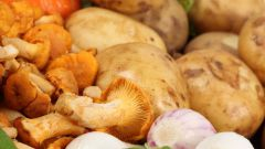 Как потушить картофель с грибами