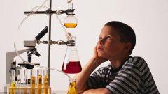 Как провести дни науки в школе