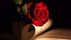 Как организовать вечер памяти известного писателя