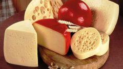 Чем полезен сыр? И всем ли он полезен?