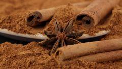 Полезные свойства какао порошка