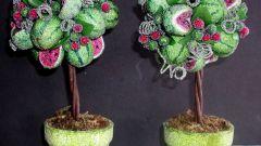 Топиарий – дерево счастья