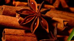 Афродизиаки: обман или панацея?