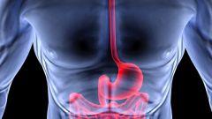 Эндоскопия как диагностическая и лечебная процедура