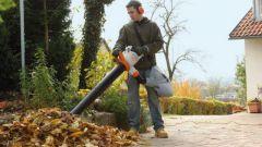 Выбор садового пылесоса