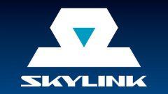 Как пользоваться skylink