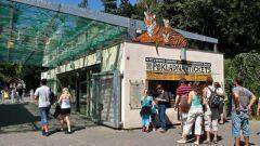 Как добраться в зоопарк в Праге
