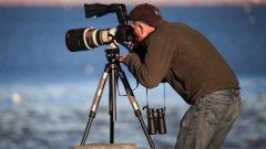 Как выбрать штатив для фотоаппарата