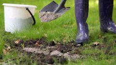 How to make soil ash