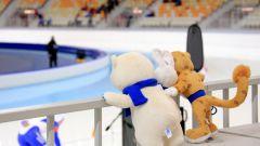 Как заказать билеты на Олимпийские игры в Сочи