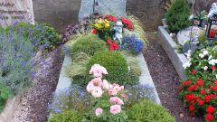 Как оформить растениями места захоронений