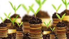 Как выбрать ПАММ-счет или основы доверительного инвестирования