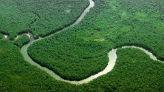 Какая самая длинная река мира