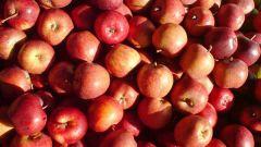 Как похудеть, если пить яблочный уксус