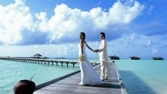 Куда отправится в свадебное путешествие
