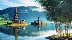 Куда лучше поехать на Бали