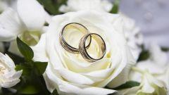 Как подать заявление на регистрацию брака в 2017 году