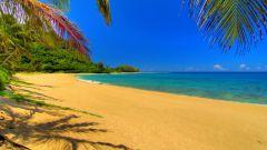 Куда можно поехать на каникулы