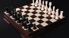 Как ходят шахматы