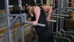 Какие мышцы работают при занятиях на брусьях