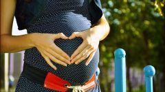 Как оплачивается беременность