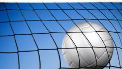 Как провести тренировки по волейболу