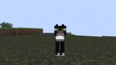 Как приручить кота в Minecraft