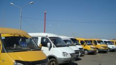 Where to complain of drivers of minibuses