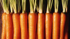 Два полезных гарнира из моркови