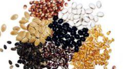 Как стратифицировать (охлаждать) семена для дружного прорастания