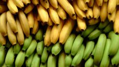 Где растут бананы