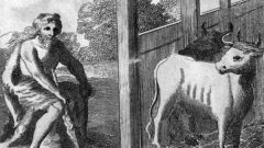 Каково значение фразеологизма `авгиевы конюшни`